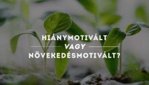 Növekedésmotivált vagy hiánymotivált vagy? – úton lenni, vagy célokért küzdeni?